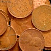 1909 VDB Lincoln Wheat Cent KEY DATE Filler
