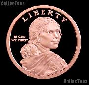 2010-S Native American Dollar GEM Proof 2010 Sacagawea Dollar SAC