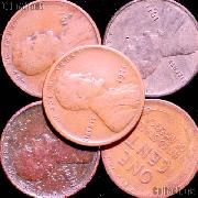 1911-S Lincoln Wheat Cent KEY DATE Filler