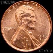 1935-D Lincoln Wheat Cent  GEM BU RED Penny for Album