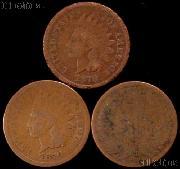 1870 Indian Head Cent - Better Date Filler