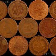 1879 Indian Head Cent - Better Date Filler