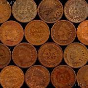 1894 Indian Head Cent - Better Date Filler
