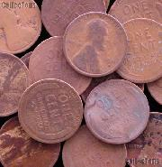1911-D Lincoln Wheat Cent BETTER DATE Filler