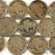 1920-D Buffalo Nickel BETTER DATE Filler