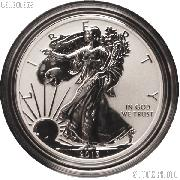 2013-W American Silver Eagle REVERSE PROOF Coin from US Mint Set in Capsule