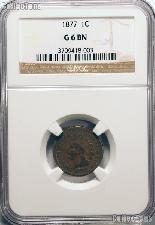 1877 Indian Head Cent KEY DATE in NGC G 6 BN (Brown)