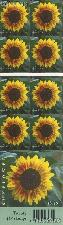 2008 Sunflower 42 Cent US Postage Stamp Unused Booklet of 20 Scott #4347a