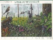 2002 Longleaf Pine Forest 34 Cent US Postage Stamp Unused Sheet of 10 Scott #3611