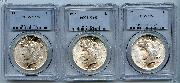 Peace Silver Dollars  1921-1935 in PCGS MS 65 Mixed Dates and Mint Marks