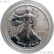 2006-P American Silver Eagle REVERSE PROOF from 20th Anniversary Set in Capsule