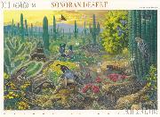 1999 Sonoran Desert 33 Cent US Postage Stamp Unused Sheet of 10 Scott #3293
