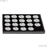 Coin Tray for 20 American Silver Eagle Dollars by Lighthouse